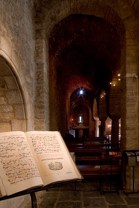 North side aisle,  Abbaye Saint Martin-du-Canigou, Casteil (Pyrénées-Orientales)  Photo by Dennis Aubrey