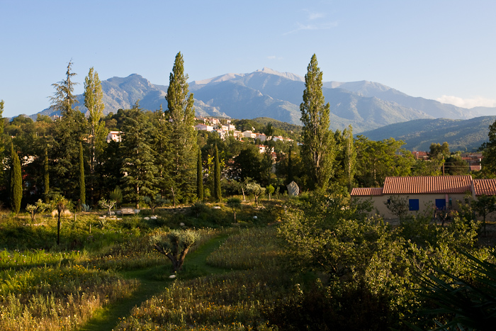 View of Mont Canigou from the Castel Rose  (Photo by Dennis Aubrey)
