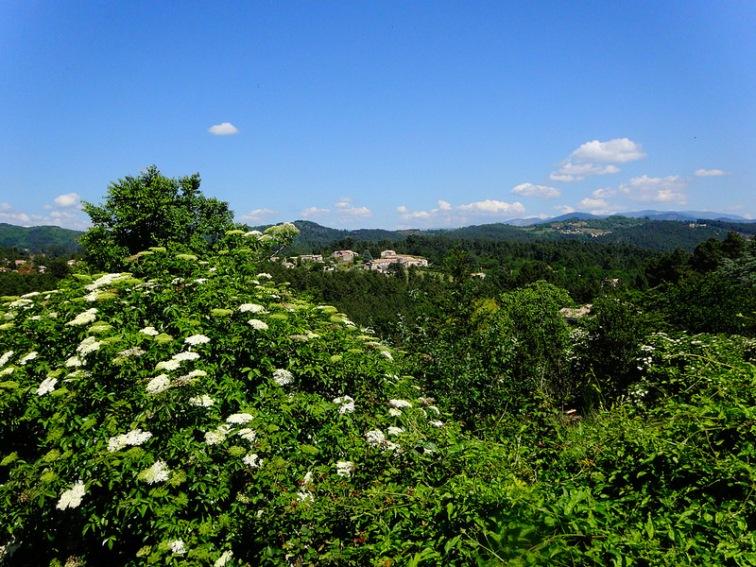 Countryside near Ailhon,  Photo by Nathan Mizrachi