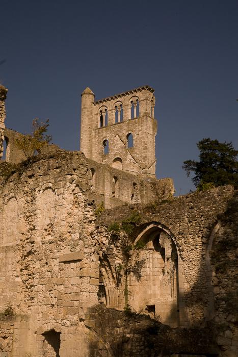 Abbaye Saint-Pierre de Jumièges (Seine-Maritime), Photo by PJ McKey