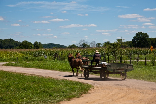 Amish wagon, photo by Dennis Aubrey